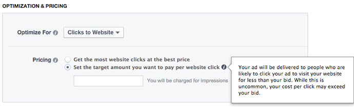 Facebook Power Editor New Ad Set Optimization Pricing Optimize Clicks to Website