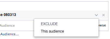 Facebook Power Editor New Ad Set Audience Edit Exclude