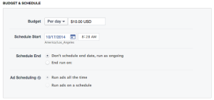 Facebook Power Editor New Ad Set Budget and Schedule