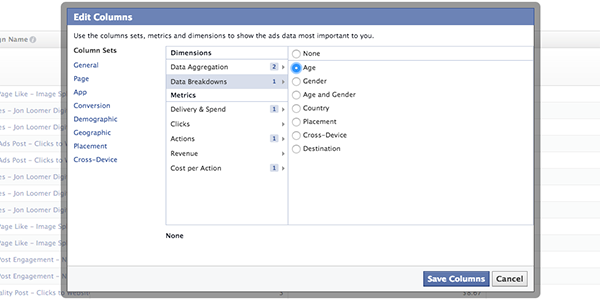 Facebook Ad Reports Data Aggregation Age