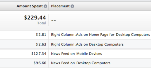 Facebook Ad Reports Placement