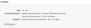 Facebook Ads Experiment Audience