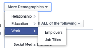 Facebook Ad Targeting More Demographics