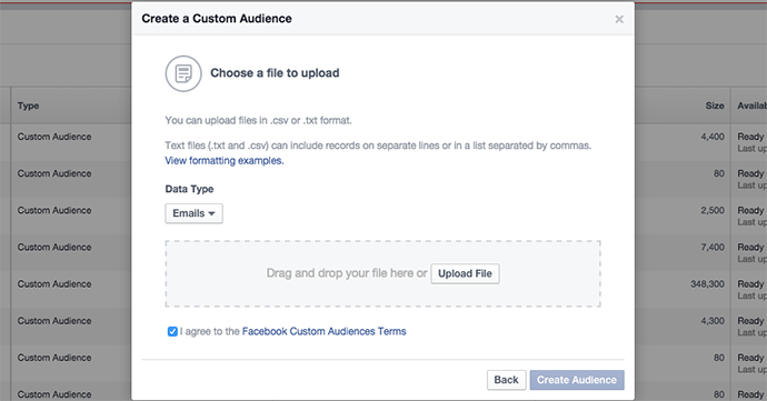 Facebook Email Custom Audience