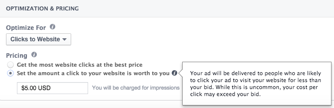 Facebook Clicks to Website Bidding Manual