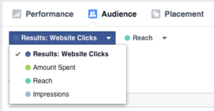New Facebook Ads Manager Audience Results