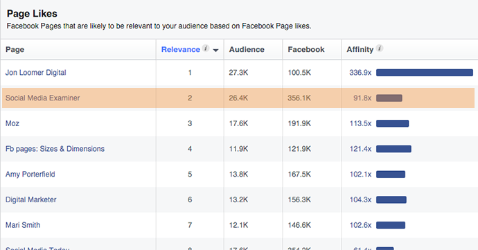 Facebook Audience Insights Likes