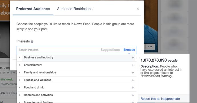 Facebook Preferred Audience