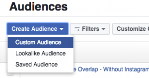 Facebook Canvas Custom Audiences