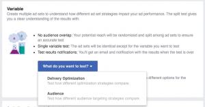 Facebook Ad Split Testing