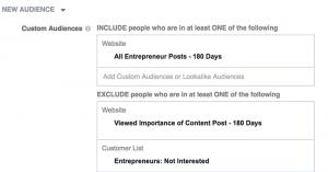 Entrepreneur Audience Targeting