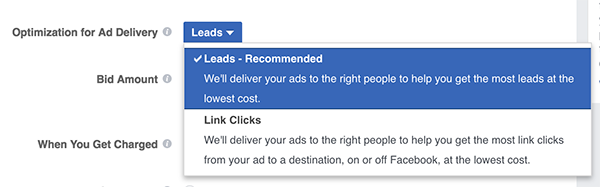 Facebook Lead Ads Optimization