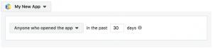 Facebook App Activity Custom Audiences