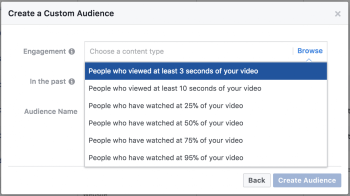 Facebook Video Views Custom Audience