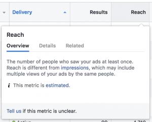 Facebook Ads Metrics Estimated