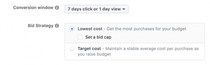 Facebook Ads Bid Strategies
