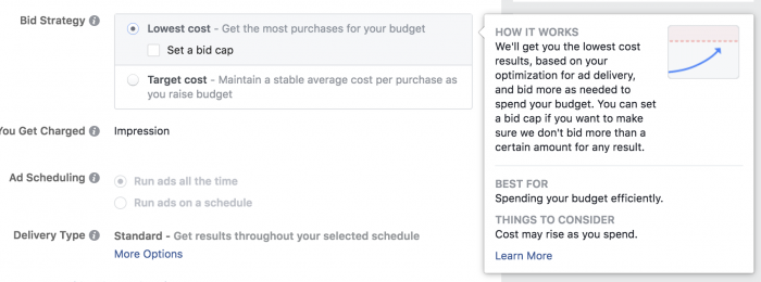 Facebook Ads Lowest Cost Bid Strategy