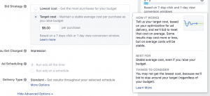 Facebook Ads Target Cost Bid Strategy