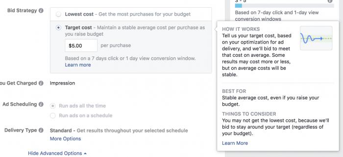 Facebook Ads Target Cost Bid Strategy