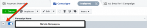 Facebook Ads Manager - Campaign Selection Example