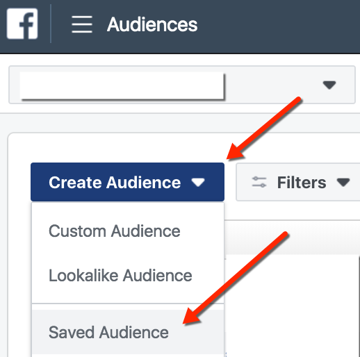 Facebook Ads Manager - Create and Save Audience