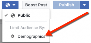 Facebook Publishing Tools Audience Demographics