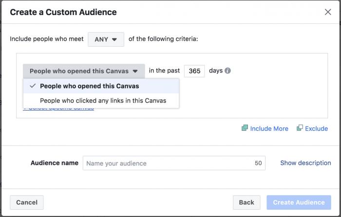 Facebook Canvas Custom Audience
