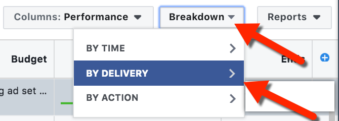 Ads Manager - Breakdown by Delivery