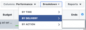 Facebook Ads Manager - Breakdown by Delivery