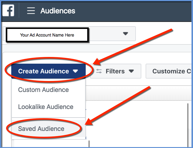 Facebook Saved Audience - Creation Selector
