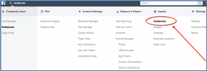 Create Audience - Ads Manager