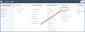 Facebook Audience Selector from Ads Manager