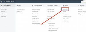 Selecting Facebook Audiences from Ads Manager
