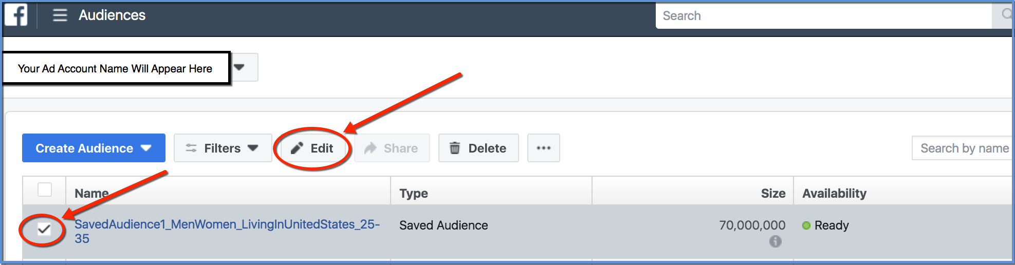 Ads Manager - Select and Edit Audience