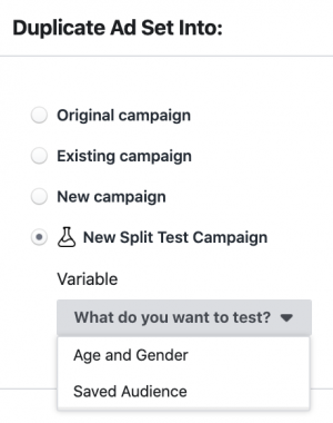 Facebook Ad Set Split Test Duplication