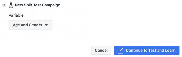 Facebook Ad Set Split Test