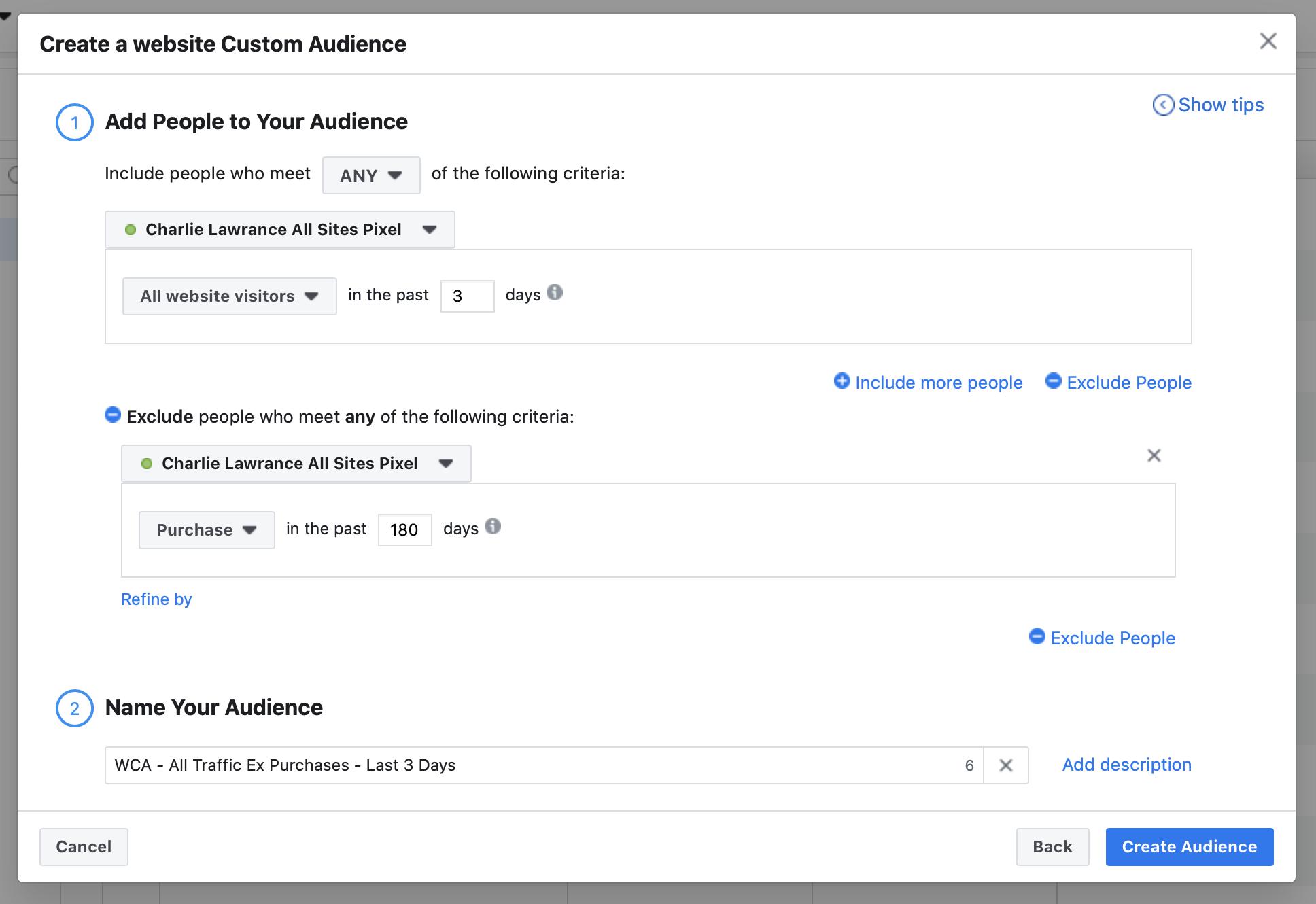 3 day website custom audience