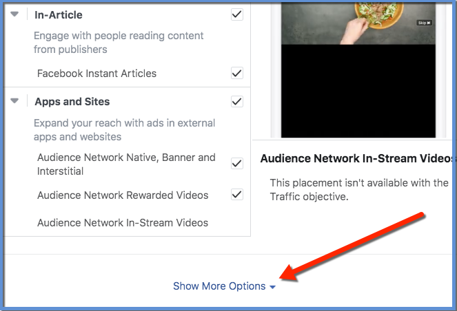 Facebook Ads Manager Placements - Show More Options