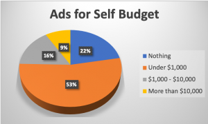 Ads for Self Budget