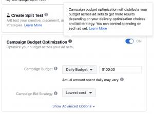 Facebook Campaign Budget Optimization