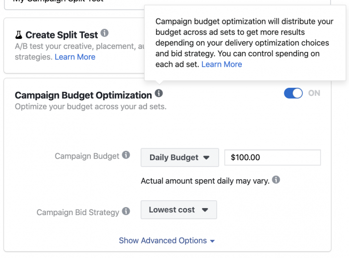 Optimizing the budget of the Facebook campaign